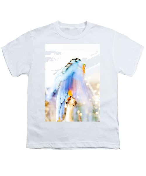 Wing Dream Youth T-Shirt