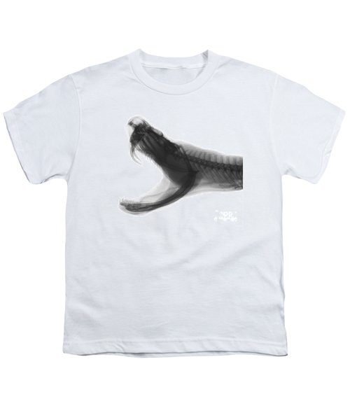 Eastern Diamondback Rattlesnake, X-ray Youth T-Shirt by Ted Kinsman
