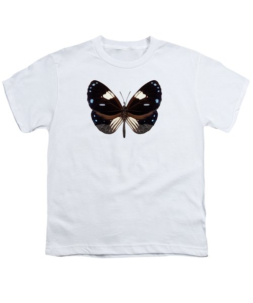 Butterfly Species Euploea Radamanthus Common Name Magpie Crow Youth T-Shirt