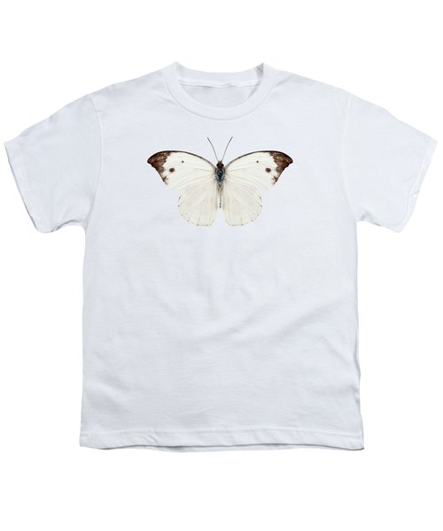 Butterfly Species Pieris Rapae Youth T-Shirt