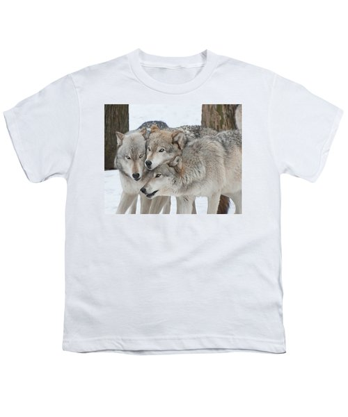 Three Wolves Are A Crowd Youth T-Shirt