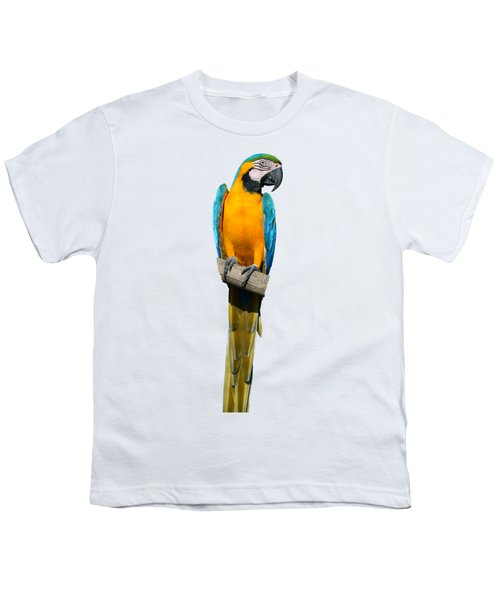 Blue And Gold Macaw Youth T-Shirt by George Atsametakis