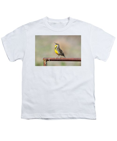 A Morning Song Youth T-Shirt by Michael Morse