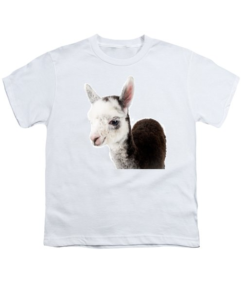 Adorable Baby Alpaca Cuteness Youth T-Shirt by TC Morgan