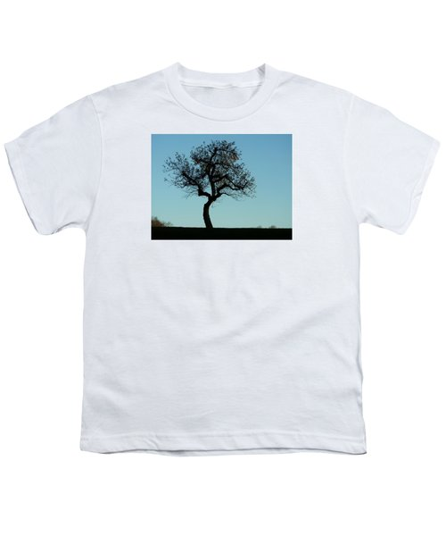 Apple Tree In November Youth T-Shirt