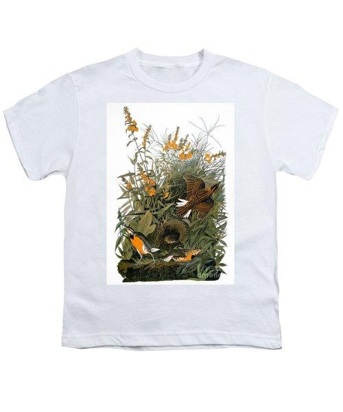 Audubon: Meadowlark Youth T-Shirt by Granger