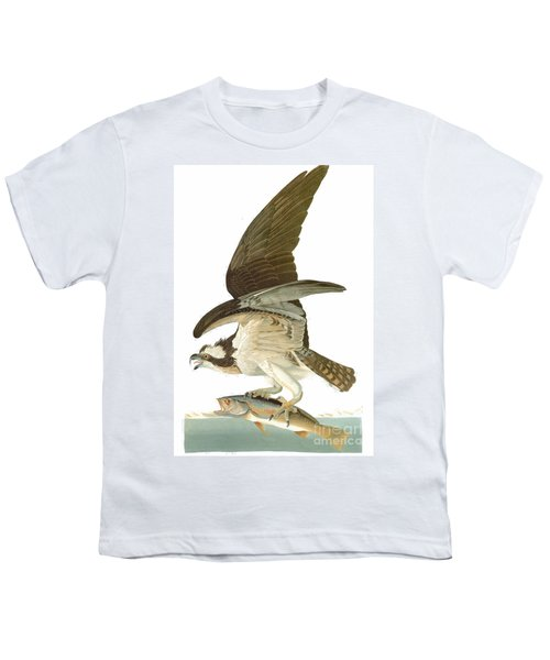 Audubon: Osprey Youth T-Shirt