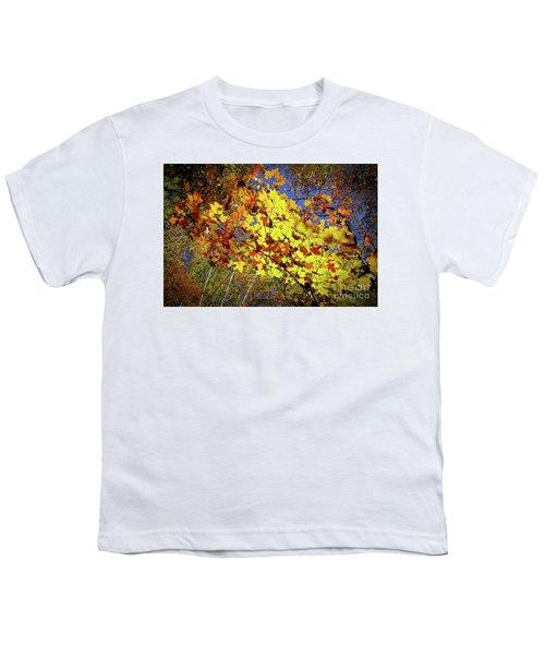 Autumn Light Youth T-Shirt by Tatsuya Atarashi