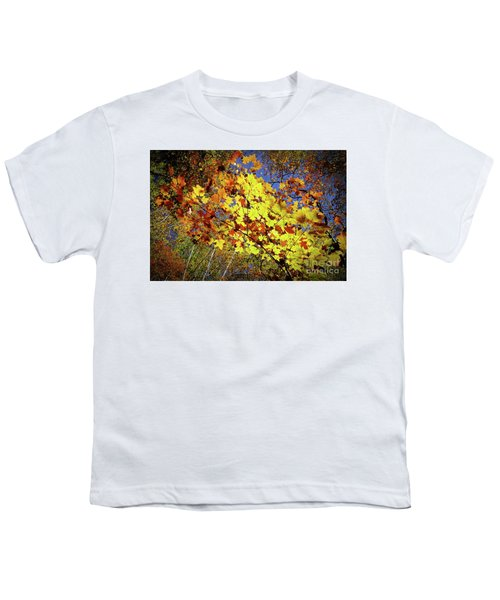 Autumn Light Youth T-Shirt