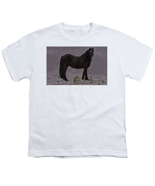 Black Horse In The Snow Youth T-Shirt