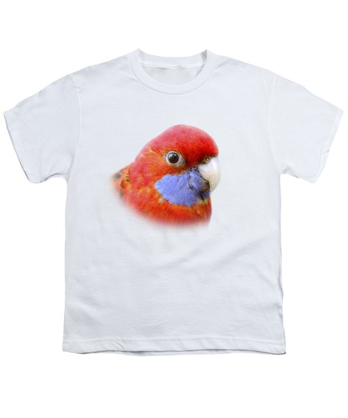 Bobby The Crimson Rosella On Transparent Background Youth T-Shirt by Terri Waters