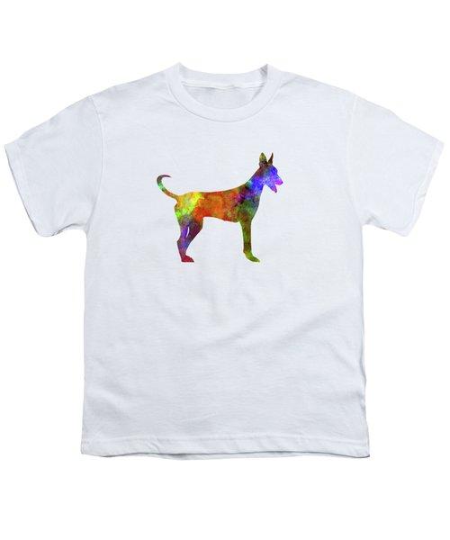 Canarian Warren Hound In Watercolor Youth T-Shirt
