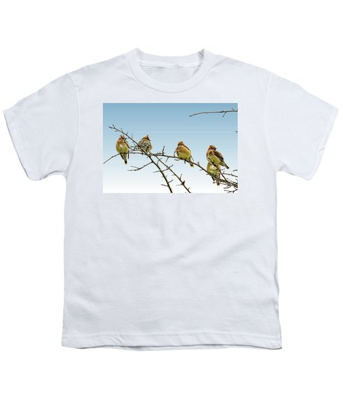 Cedar Waxwings Youth T-Shirt by Geraldine Scull