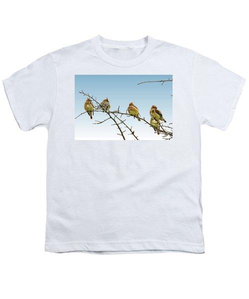Cedar Waxwings Youth T-Shirt