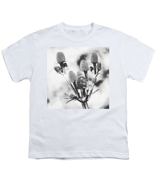 Eryngium #flower #flowers Youth T-Shirt by John Edwards