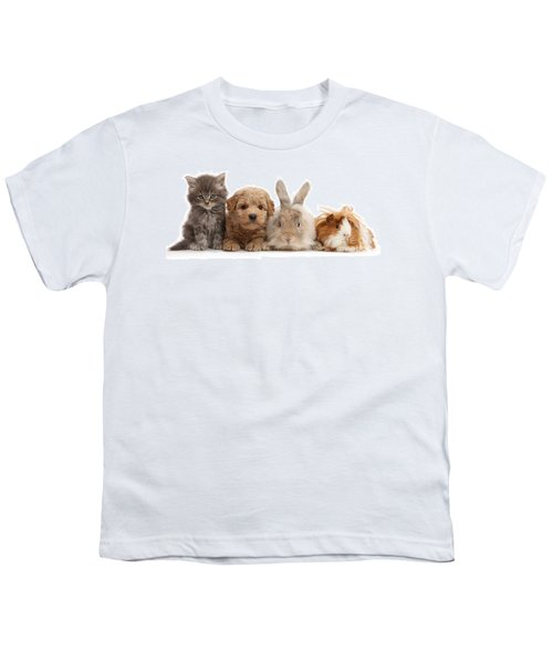 Gang Of Four Youth T-Shirt