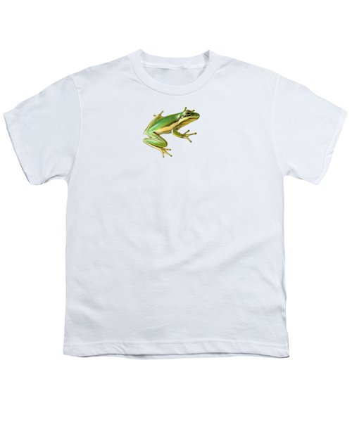 Green Tree Frog Youth T-Shirt by Sarah Batalka
