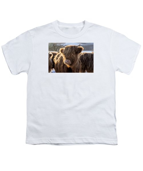Highland Baby Coo Youth T-Shirt by Jeremy Lavender Photography