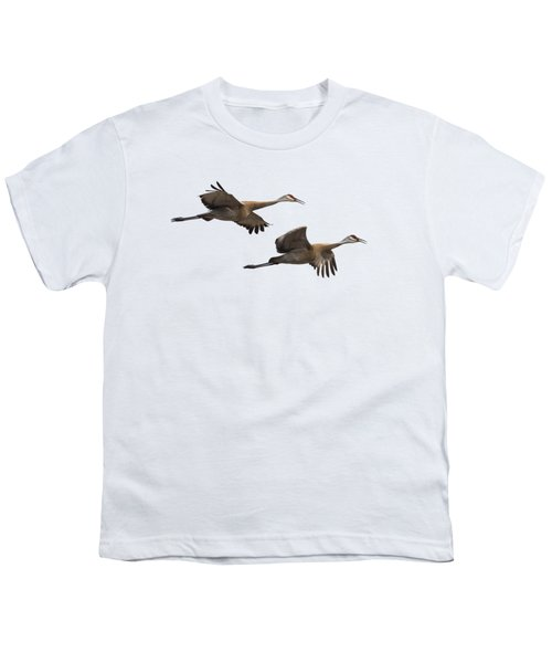 Isolated Sandhill Cranes 2016-1 Youth T-Shirt