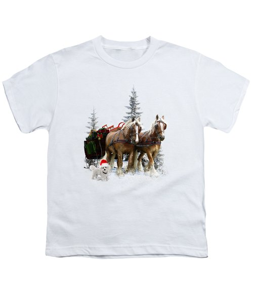 A Christmas Wish Youth T-Shirt by Shanina Conway