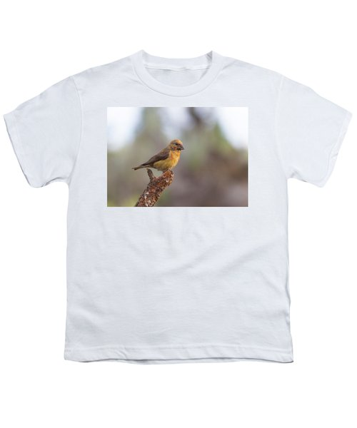 Juvenile Male Red Crossbill Youth T-Shirt