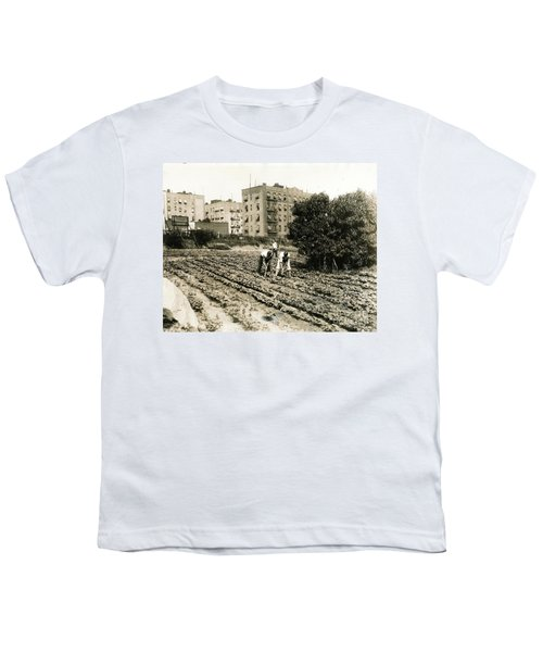 Last Working Farm In Manhattan Youth T-Shirt by Cole Thompson