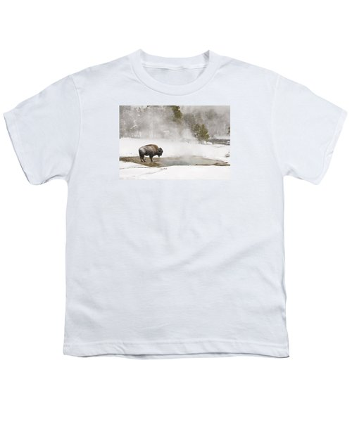Youth T-Shirt featuring the photograph Bison Keeping Warm by Gary Lengyel