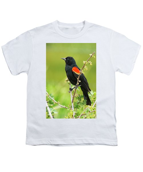 Male Red-winged Blackbird Youth T-Shirt