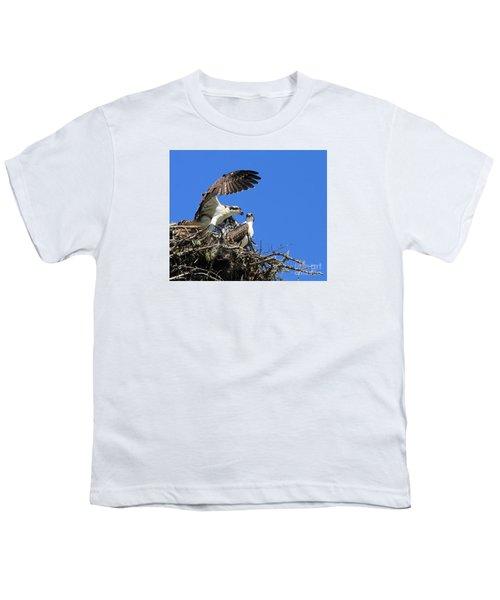 Osprey Chicks Ready To Fledge Youth T-Shirt