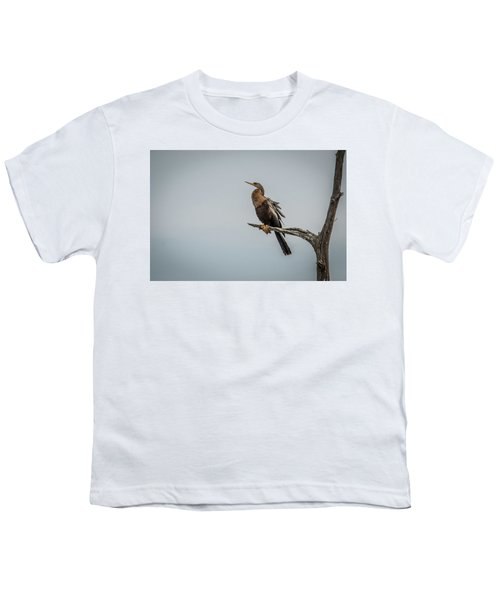 Perched Anhinga Youth T-Shirt