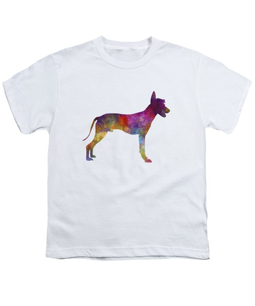 Peruvian Hairless Dog In Watercolor Youth T-Shirt by Pablo Romero