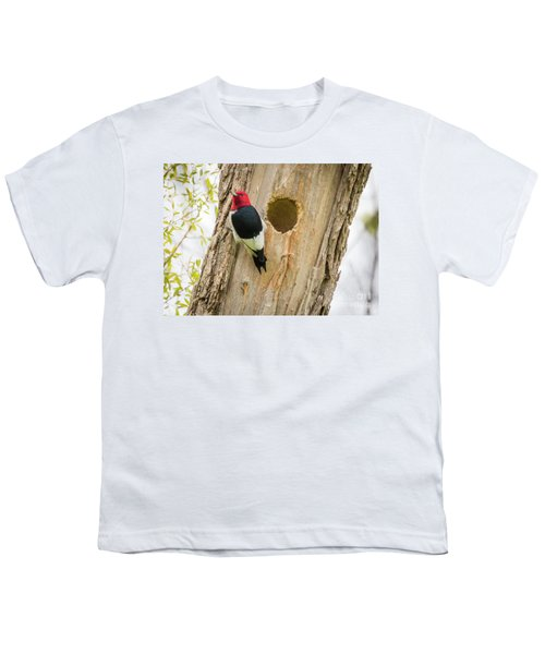 Red-headed Woodpecker At Home Youth T-Shirt