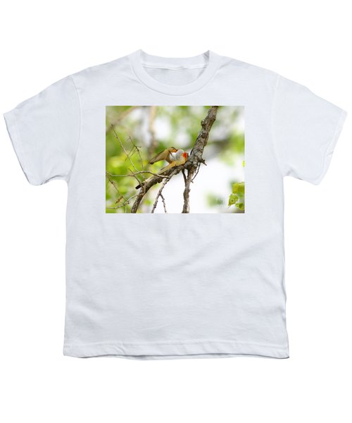 Scissortail Ballet Youth T-Shirt by Robert Frederick
