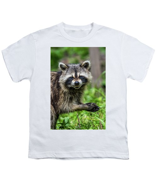 Smiling Raccoon Youth T-Shirt by Paul Freidlund
