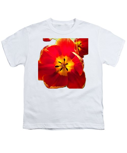 Sunkissed Tulips Youth T-Shirt