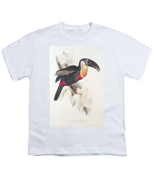 Toucan Youth T-Shirt