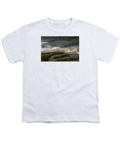 View From Masada Youth T-Shirt