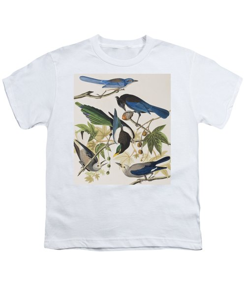 Yellow-billed Magpie Stellers Jay Ultramarine Jay Clark's Crow Youth T-Shirt