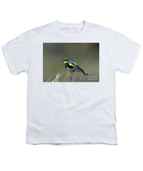 Yellow-rumped Warbler Youth T-Shirt by Mike Dawson