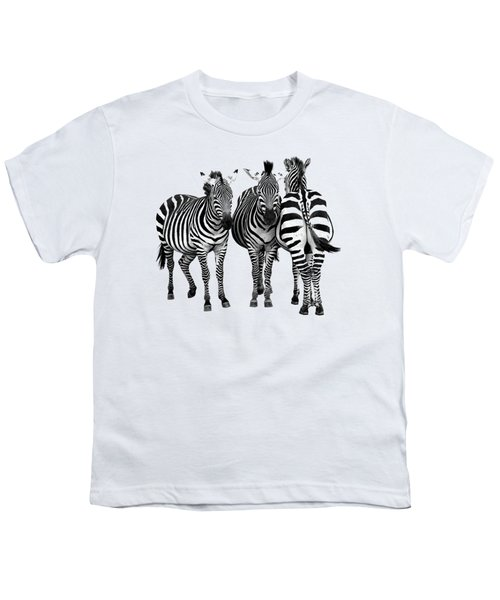 Zebra - Three's A Crowd Youth T-Shirt by Gill Billington