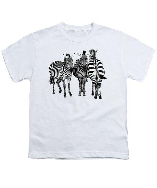 Zebra - Three's A Crowd Youth T-Shirt