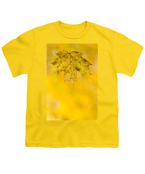 Youth T-Shirt featuring the photograph Golden Autumn by Sebastian Musial