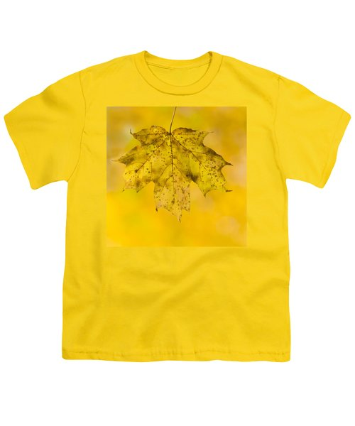 Youth T-Shirt featuring the photograph Golden Maple Leaf by Sebastian Musial