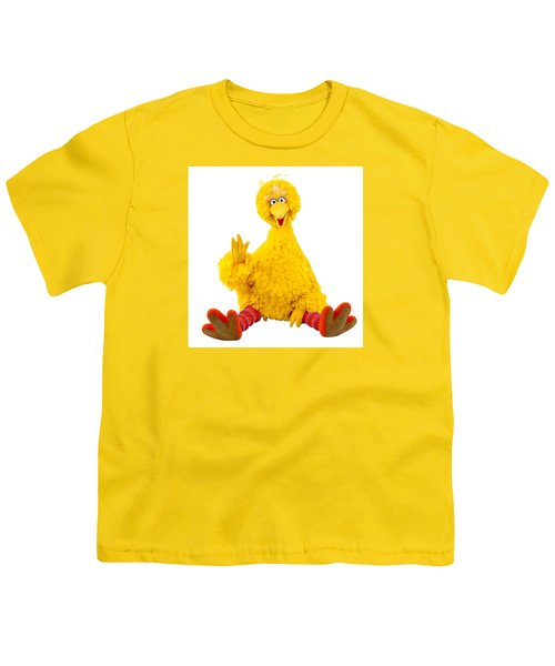 Big Bird Youth T-Shirt