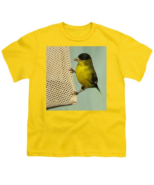 Male Goldfinch On Sock Feeder Youth T-Shirt
