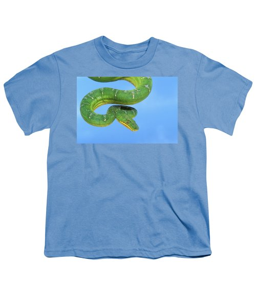 Emerald Tree Boa Corallus Caninus Youth T-Shirt by Thomas Kitchin & Victoria Hurst