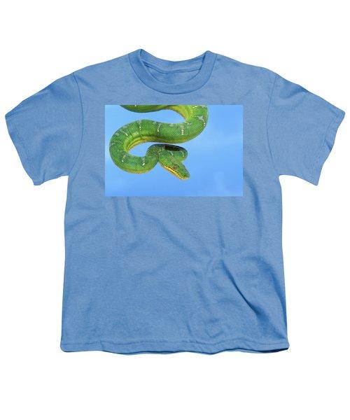 Emerald Tree Boa Corallus Caninus Youth T-Shirt by Thomas Kitchin & Victoria Hurst