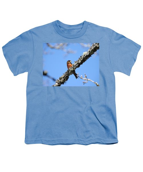 Red Crossbill Finch Youth T-Shirt by Marilyn Wilson