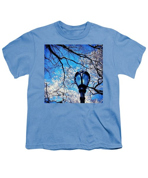 Spring In Central Park New York Youth T-Shirt by Anna Porter