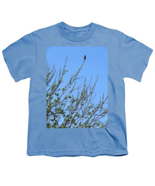 American Kestrel Atop Pecan Tree Youth T-Shirt